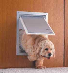 using-dog-doors